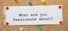 What Are You Passionate About on a cork notice board